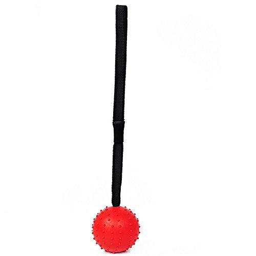 CAOQAO Ultra Tug Jouet pour Chien 30 Cm Balle avec Corde À Noeud pour Chien Indestructible Caoutchouc Balle en Corde Jouet à MâCher Interactif Resistant Nettoyer Les Dents,Rouge