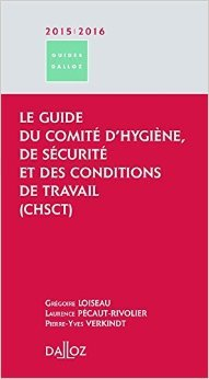 Le guide des lections professionnelles 2011/2012 - 2e d.: et des dsignations de reprsentants syndicaux dans l'entreprise de Marie-Laure Morin,Laurence Pcaut-Rivolier,Yves Struillou ( 14 septembre 2011 )