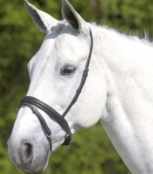 Waldhausen Star Englisch kombiniertes Reithalfter, schwarz, Pony
