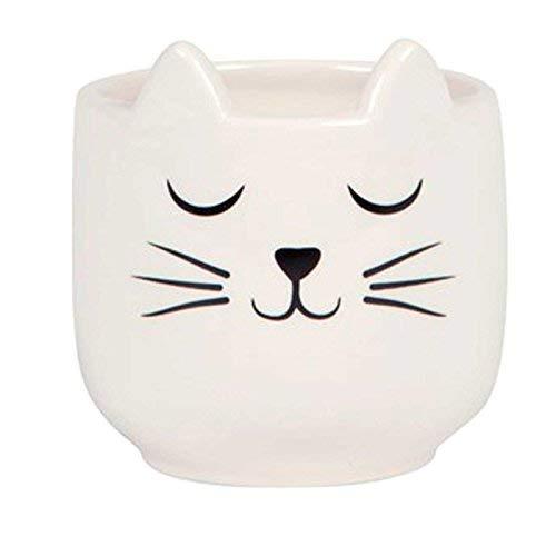 Mini-Pflanzgefäß - Motiv: Katze mit Schnurrhaaren (Katze Blumentopf)