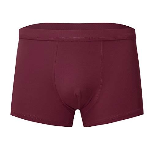 Notdark Herren Boxershort Unterhose, Fashion Seamless Unterhosen Boxershorts Herren, hohl und bequem Unterwäsche Retroshorts für Herren (3XL,Wein) - Mens Seamless Bikini-unterwäsche