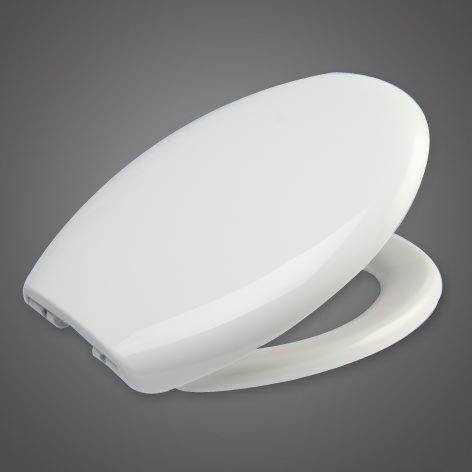 WOLTU WS2542-1 Wc Sitz mit Absenkautomatik, Fast Fix/Schnellbefestigung, Soft-Close/Take off Scharniere, Antibakteriell
