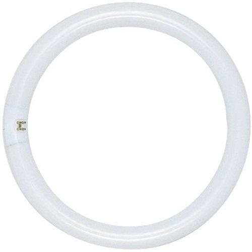 Preisvergleich Produktbild Satco s6509 4100 K 20 Watt 4 Pin T9 Circline Ringlampe Lampe,  Kaltweiß