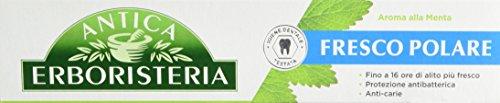 Newsbenessere.com 31wXGZ4LUJL Antica Erboristeria Dentifricio Fresco Polare Menta e Effetto Collutorio - 75 ml
