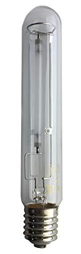 LeuchTek - Lámpara de vapor de sodio (cristal, tamaño único), transparente