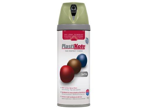 plasti-kote-22122-400ml-premium-spray-paint-satin-leafy-rise