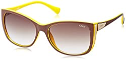 IDEE Oval Sunglasses (IDS1842C5SG|100|Maroon and Yellow )