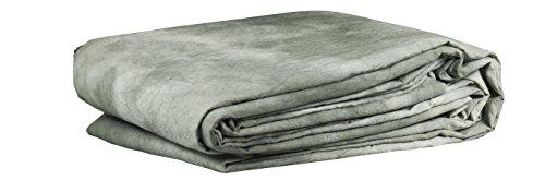 Bresser BR-5118 - Tessuto di sfondo, 3 x 6 m, colore grigio chiaro classico