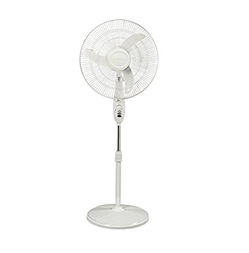 VARSHINE ASHOKA || HOTLINE Bullet Cyclone Padestral Fan || High Speed || Copper Winding || Safety Grid || 3 Speed Mode || 16 inch || A-01