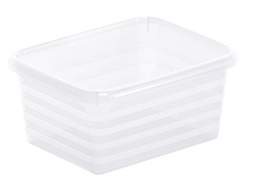 Rotho 1719100096 Formatkörbchen Linus aus Kunststoff, A7, transparente Aufbewahrungsbox, 14 x 11 x 6 cm