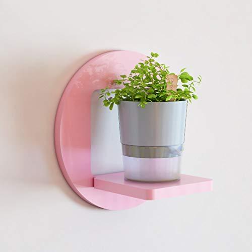 Cxmm Kreative Wand Rahmen Wohnzimmer wanddekoration dekorrahmen Balkon Rahmen Wand Pflanze blumentopf blumenregal (Farbe: Rosa, Form: Rund) -