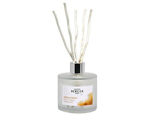 Maison Berger Paris Aroma Energy Duftbouquet 6057 + 1 Stück HEVO® Feuerzeug Gratis - Moschus Parfüm Duft Öl