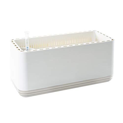 AIRY Box - Luftreiniger Blumentopf für saubere Raumluft. Patentierter Pflanzen-Topf als natürlicher Raumluftfilter, ohne Strom u. Chemie (Snow White)