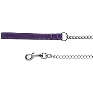 BBD PET PRODUCTS Heavy Leather Chain Lead, 36-Inch, Purple 31wuti67gML