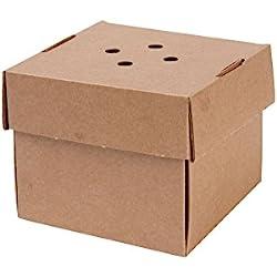 Caja XL para hamburguesa de cartón ecológica 13x13x10, extra resistente 100uds