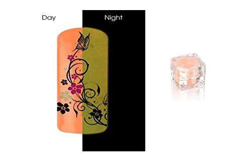 Poudre Phosphorescent Gel uv ongles - Brille la nuit - Pastel Saumon ( Rose orangé ) REF8582