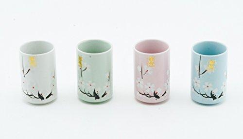 Japanische Tee Tassen Keramik-Set von 4Kirschblüte Sakura sortiert Farben Vier Saison Dekorative Geschenk Pack