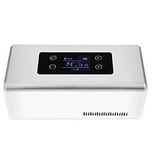 Mini-Kühlschrank Medikamenten-Kühlschrank und Insulinkühler für Auto, Reise, Heim - Tragbarer Koffer für die Autokühlung/Kleine Reise-Box für Medikamente