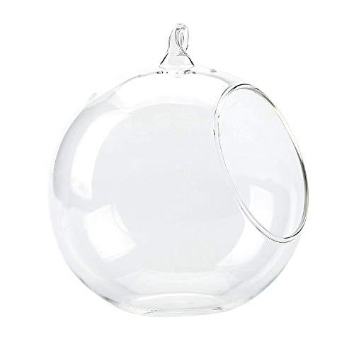 Vi.yo Vi. yo-Glas-Terrarium für Pflanzen, aus Glas, transparent, Dekoration, durchsichtig, 12 cm