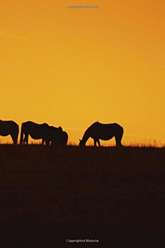 Journal Horses Sunset Silhouettes Equine: (Notebook, Diary, Blank Book) (Horse Photo Journals Notebooks Diaries) (Wild-tier-silhouette)