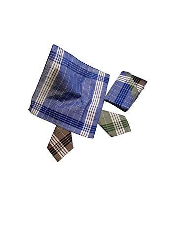 Karl Teichmann 6 Herren Stoff-Taschentücher I Unterschiedliche wählbare Designs I Baumwolle I 40 cm x 40 cm (Farbvariante 11)