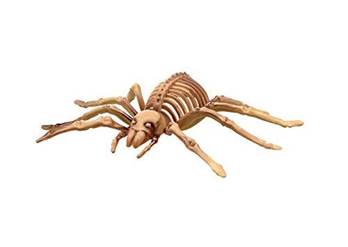 Halloween Spider Skelett Kunststoff Dekoration Requisite groß 20,3 x 12,7 cm Knochen Party gruselig Tafelaufsatz Gruselig Innen Außen
