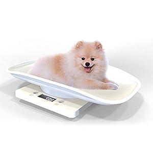 Volwco Digitalwaage Tierwaage Kleintierwaage Für Hunde Katzen Welpen Und Kleintiere Bis 10kg, Weiß