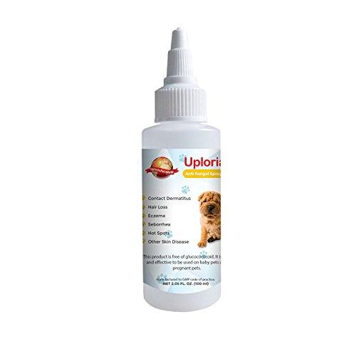 Spray Natural Para El Tratamiento De Las Alergias Cutáneas De Los Perros...