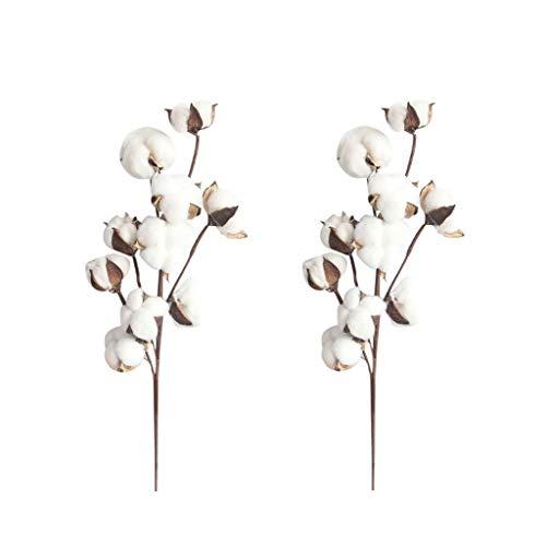 Tensay 2 Stücke 21 zoll Natürlich Getrocknete Baumwollstämme Bauernhaus Stil Künstliche Blume Füllstoff Blumendekoration