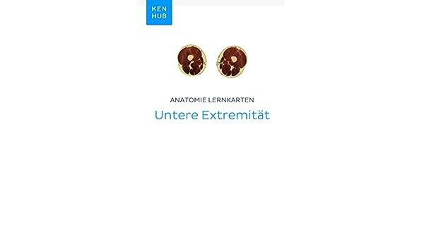 Anatomie Lernkarten: Untere Extremität: Lerne alle Präparat, Knochen ...