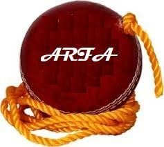 Arfa Aaina Hanging And Knocking Leather Cricket Ball For Practices And Through Open For Bat, 1 Piece