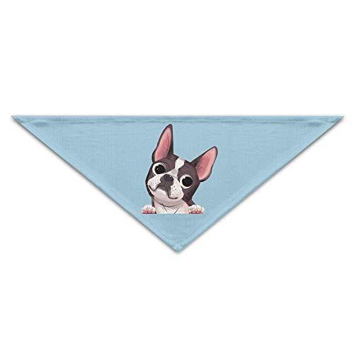 Boston Terrier Dog Dog Bandanas Schals Dreieck Lätzchen Schals Soft Basic Halstuch (Boston Terrier Kostüme)