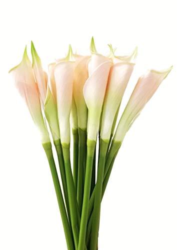 cm groß Handgefertigt Echt Latex Geschlossen Touch Gerollt Calla Lily Buds Künstliche Spring Flowers für Arrangements, Blumensträuße, Hochzeiten, (6Stück) Blush Pink ()