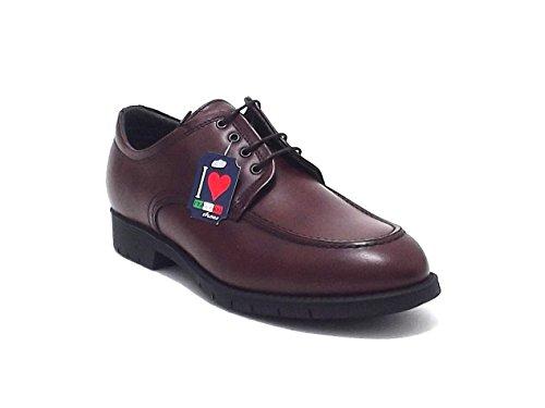 Soldini scarpe uomo, articolo 19610, scarpa classica allacciata Soldini in pelle, colore marrone