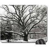 Bedford Eiche, New York City Mauspad, Mousepad (Winter Maus Pad) (Bedford-tv)