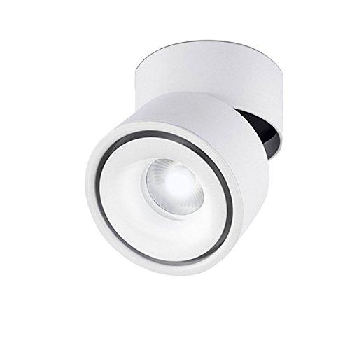 Foco LED de superficie regulable 10w blanco frío