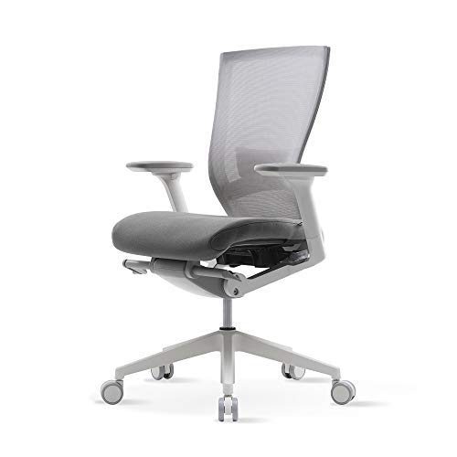 TN50 Serie Gray+lumbar Support