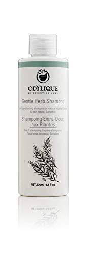 Odylique Shampoing Extra-Doux Aux Plantes Bio 200ml