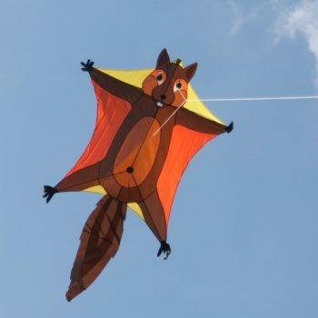 Einleiner-Drachen für Kinder - Penta Flughörnchen - inkl. Drachenschnur