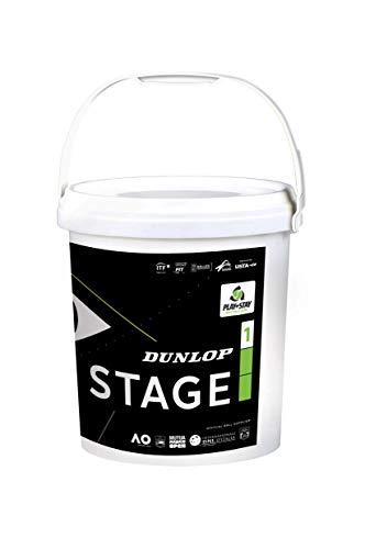 DUNLOP Stage 1 Green 60BKT - Pelota Tenis Adulto