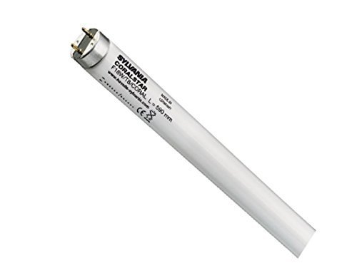 Sylvania T8/Germicidal G13/30/W Lampe fluorescente