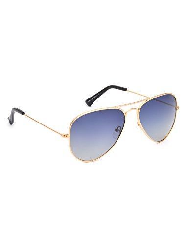 IDEE Polarized Aviator Unisex Sunglasses - (IDS2301C15PSG|58|Blue Polarized Color) image