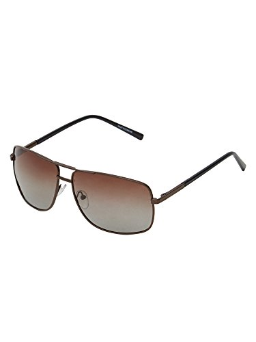 Vast Polar Vision Polarized Wayfarer Unisex Sunglasses (Polo226|Brown|56|Brown Lens)
