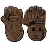 Aaina - Wicket Keeping Gloves - Leather - Large Size (Multi Colour).