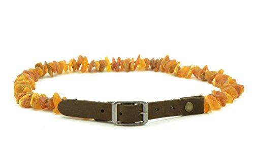 Baltischer Bernstein Pet Halsband mit verstellbarem Trageriemen, 20-65cm, natur Floh und Schutz, unpoliert Baltischer Bernstein Perlen