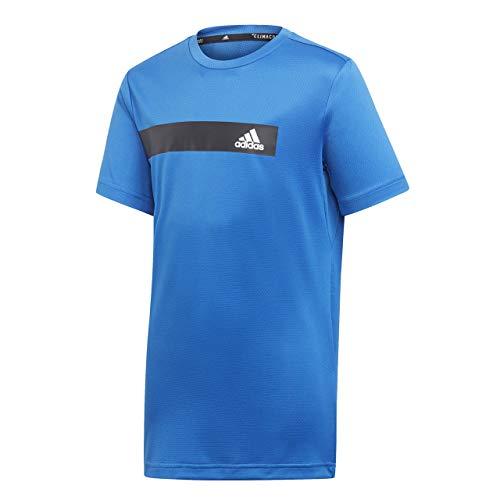 adidas Jungen TR Climacool T-Shirt, Blue, 152 (Stahl-jungen Shirt)