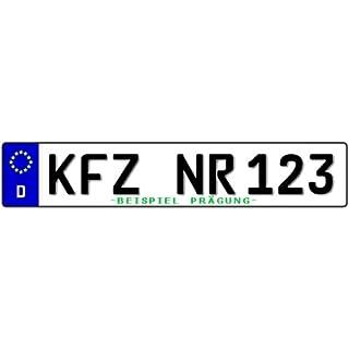 Standard PKW EU Kennzeichen 520x110mm