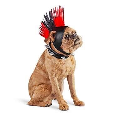 Bootique Halloween-Kostüm für Hunde, mit Mohawk-Kragen, leuchtet in den Größen S/M (Hunde Halloween Kragen Kostüm)