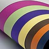 Favini Cartoncino Prisma 220 50x70 cm - Assortito (Blu, Verde, Arancione, Giallo e Rosso) - A33x022 (conf.20)