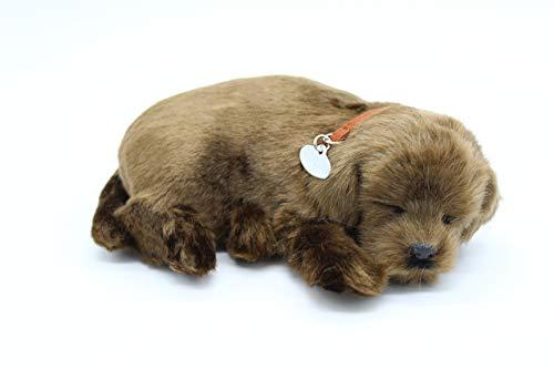 Perfect Petzzz Labrador Chocolate, das Tier das atmet